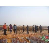 溫泉鎮到懷寧縣黃墩鎮參觀考察藍莓基地