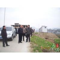 江春生到溫泉指導現代農業示范區藍莓基地建設
