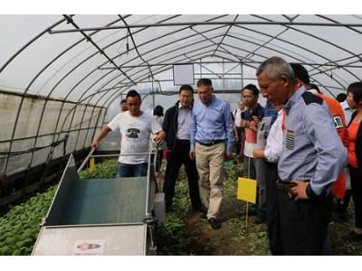 上海举办蔬菜机械化生产现场推进会