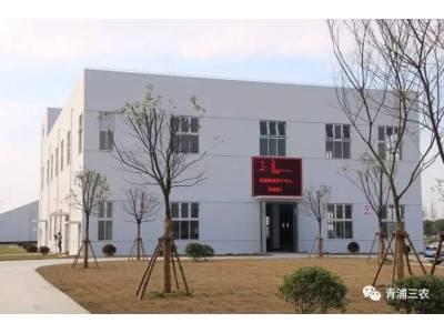 青浦:建成规模化粮食烘干、稻米加工、农机服务一体的现代服务体系