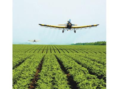 黑龙江深入推进农业供给侧改革 从种得好到卖得好