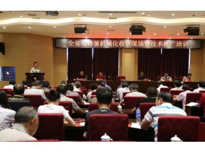 云南省马铃薯机收现场会暨技术推广培训在宣威市举办