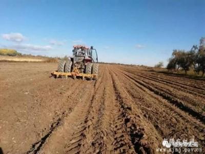 新疆福海县:深松作业助力农民来年丰收
