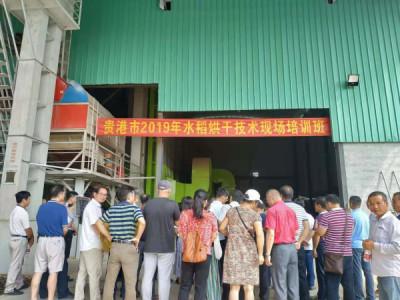 贵港市2019年水稻烘干技术现场培训会在平南举行