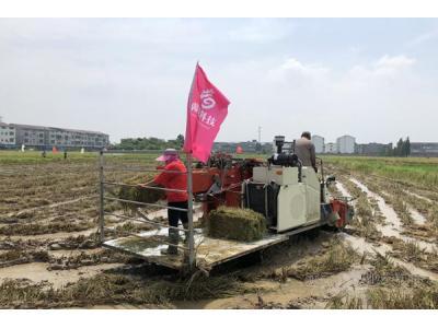 宜春市丰城市:举办早稻收割暨秸秆机械打捆现场观摩会
