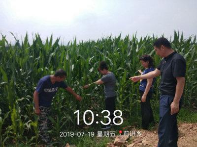 蛟河市农业机械管理总站组织农机化技术专家开展田间技术指导和义务劳动活动