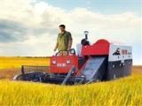 Chery 4LZ-2.0Z Rice Harvester