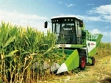 Chery 4YZ-4 Corn Harvester