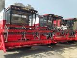 CHMC 4LZ-8A Bean Harvester