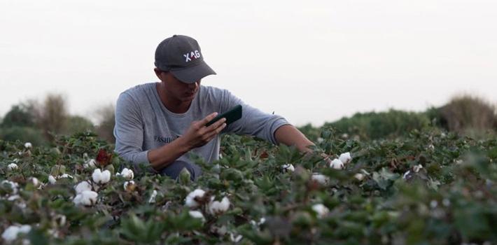 疫情后:我国智能农机助力疆棉生产,同比增长4.1%